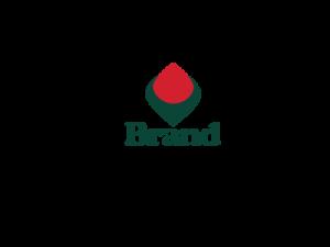 Firma de Branding ILY-CRTD-22750