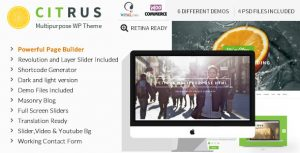 Creare site responsive Start Up ILY-TMF-3653